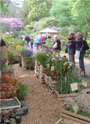 Rhodopark Hobbie - Ammerländer Gartentage