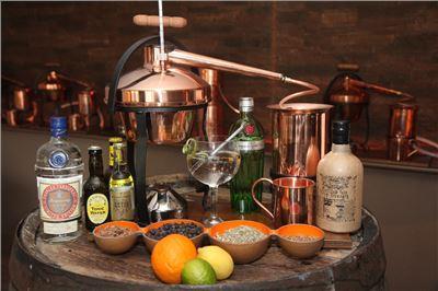 Gin selber machen als Hobby - kleines Gin-Seminar VILS