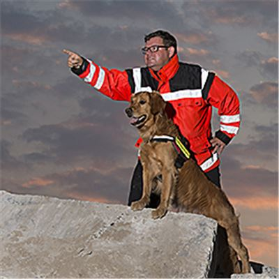 HP Hunde Gruppe/Workshop