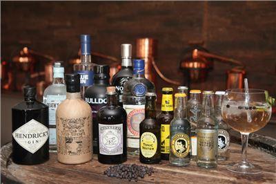 Gin selber destillieren als Hobby - kleines Gin-Seminar VILS