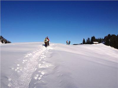 Schneeschuhwandern Schliersee