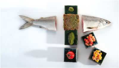 Fisch & Spargel - Fisch aus internationalen Gewässern