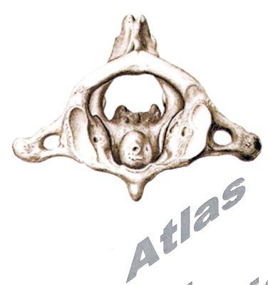 Atlaskorrektur